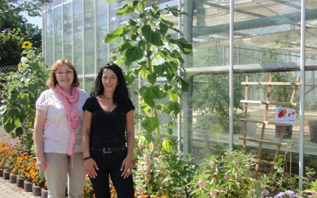 """Projekt Essbare Gärten – Gewächshaus """"Alte Kaserne"""" & Gartenfläche """"Am Kleverborn"""""""